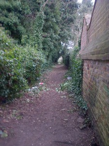 View of the path behind Woodstock Road houses