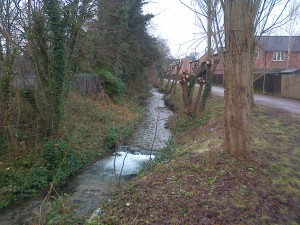 River Wandle on 1st March 2013