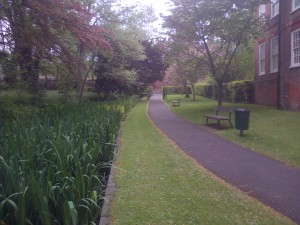 Festival Walk between West Street and Honeywood Walk